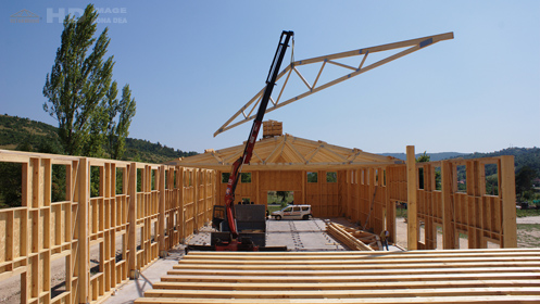 Hale pe structura din lemn
